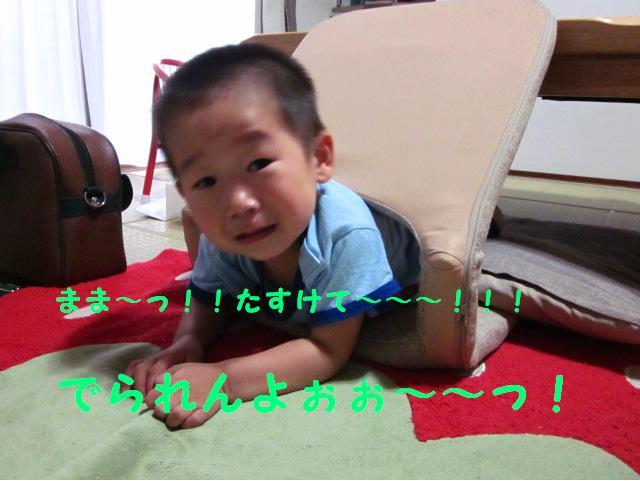 IMG_5504.jpg