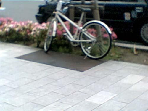 20100510トイカメラ④