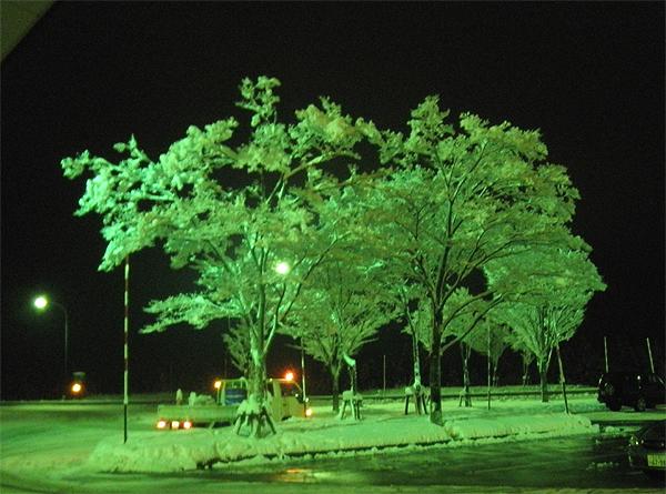 20101229富山へ②