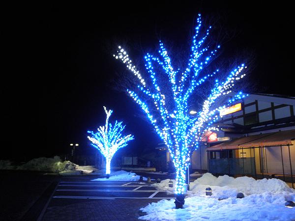 20101229富山へ③