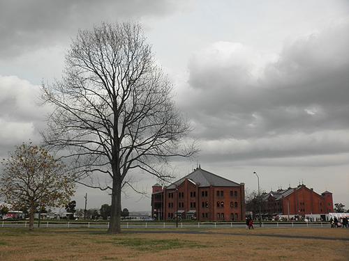 20101212赤レンガ倉庫