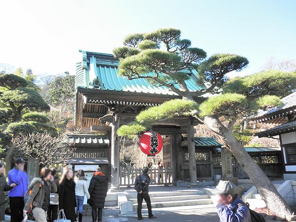 20110108長谷寺①