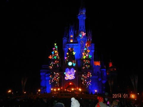 Disneyland140104a.jpg