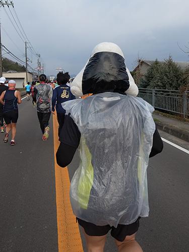 2013-1215-onigiri.jpg