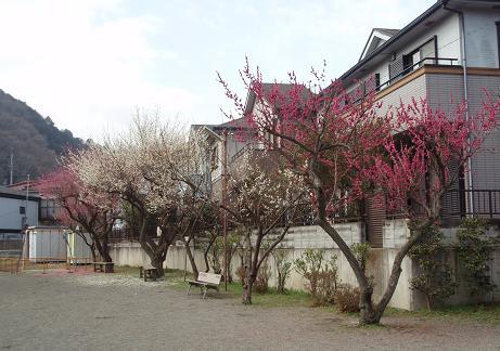 西浅川児童遊園