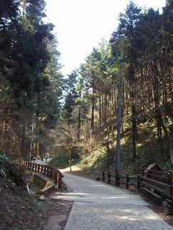 高尾山2010-1-2