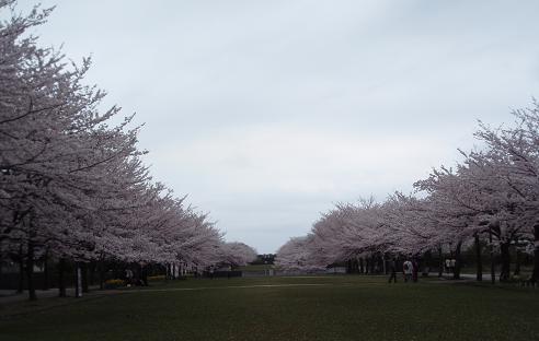 宝野公園2