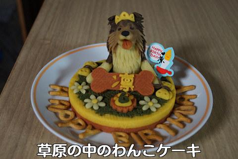 121217 草原の中のわんこケーキ