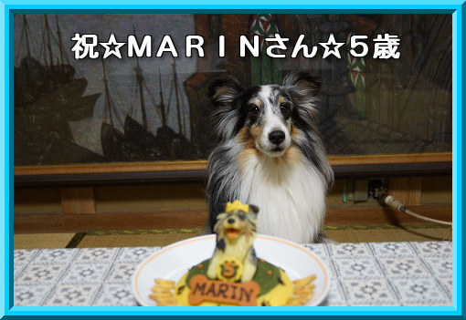 20121226 祝☆MARINさん☆5歳