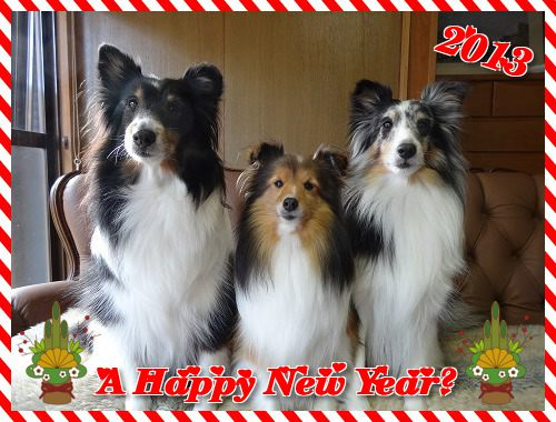 A Happy New Year♪2013
