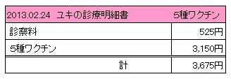 2013.02.24診療明細書【ユキ】