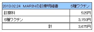 2013.02.24診療明細書【MARIN】