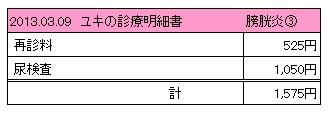 2013.03.09診療明細書【ユキ】