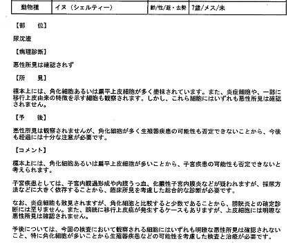 病理診断報告書20121022(ユキ)