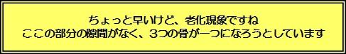 20130330【凛】‗女医先生の診断