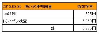 2013.03.30診療明細書【凛】