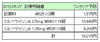 2013.05.27診療明細書【3WANS】