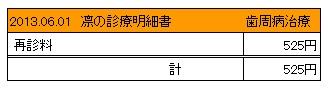 2013.06.01診療明細書【凛】