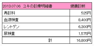 2013.07.06診療明細書【ユキ】