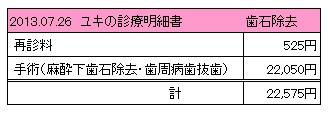 2013.07.26診療明細書【ユキ】