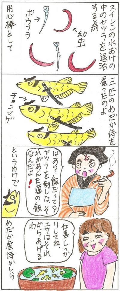 主婦 B 3匹のサムライ