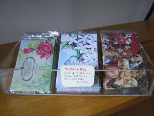 shop new7