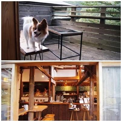 NARAYA CAFE店内