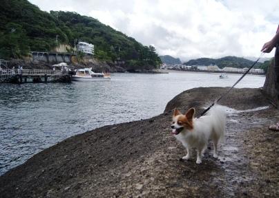 堂ヶ島を散策①
