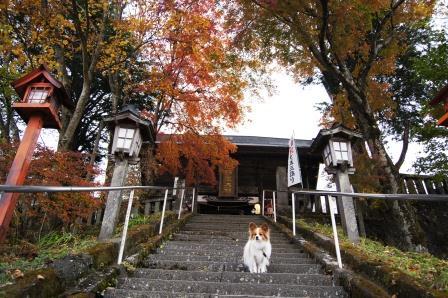 熊野神社②