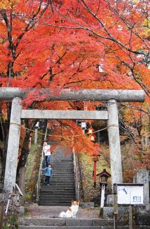 熊野神社①