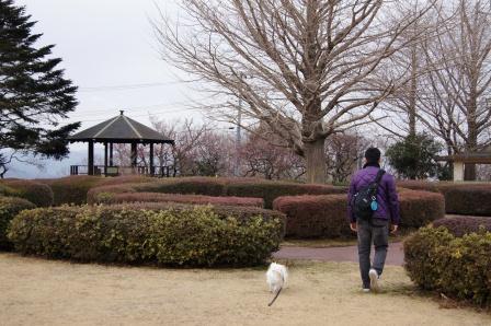 小室公園散策