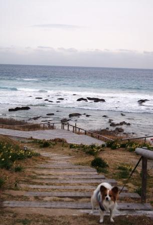 白浜中央海岸