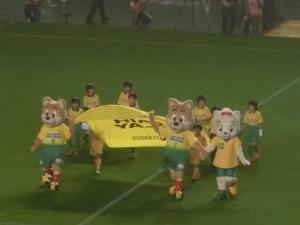 Jリーグの試合に、欠かせない光景。