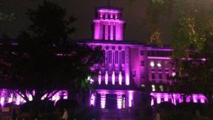 神奈川県庁がピンクに!