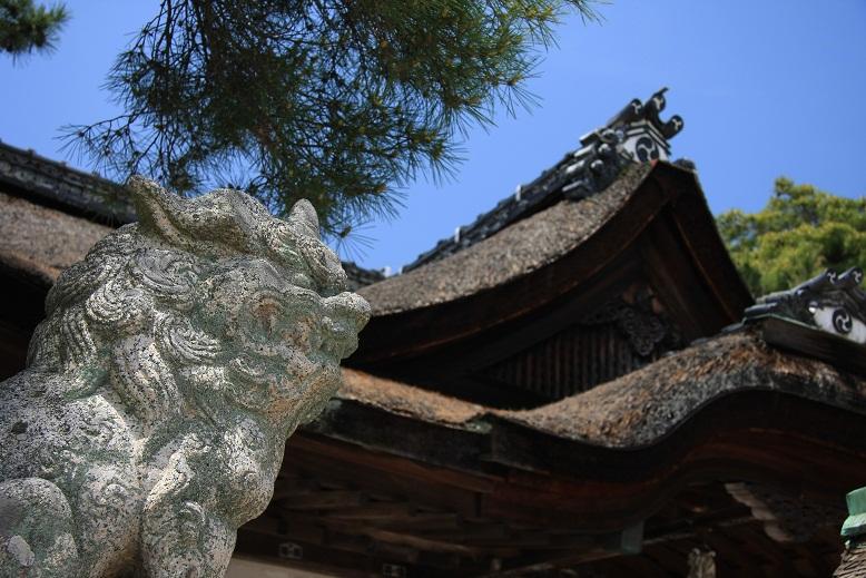 白髭神社、3