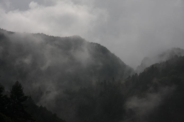 大迫ダム、3