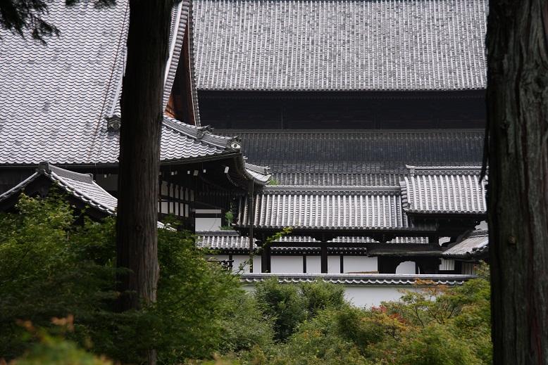 東福寺、4