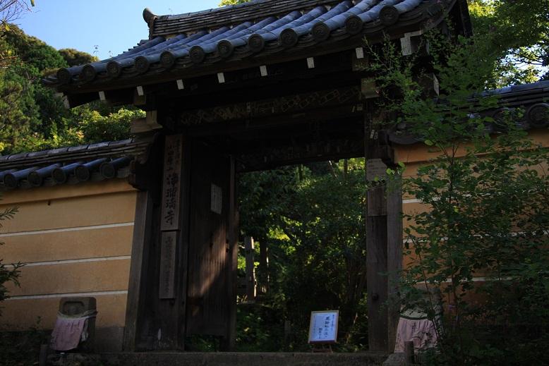 浄瑠璃寺、1