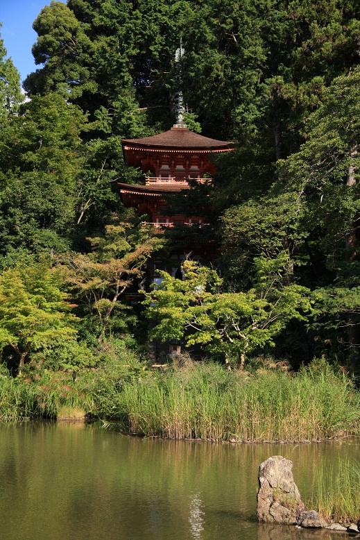 浄瑠璃寺、2