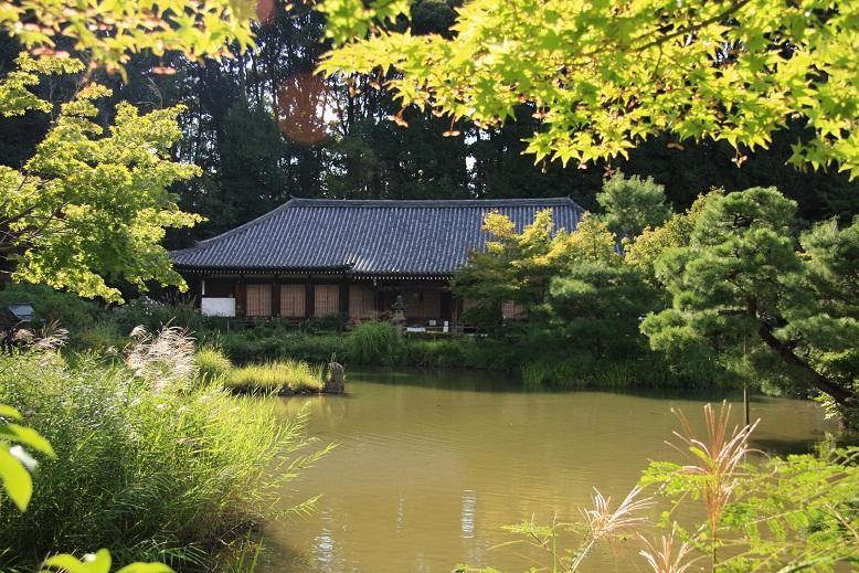 浄瑠璃寺、5