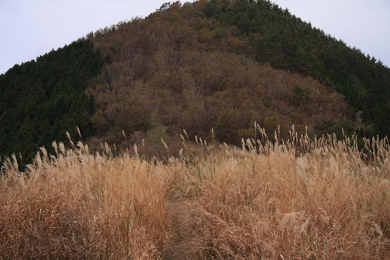 天川村観音峰、9