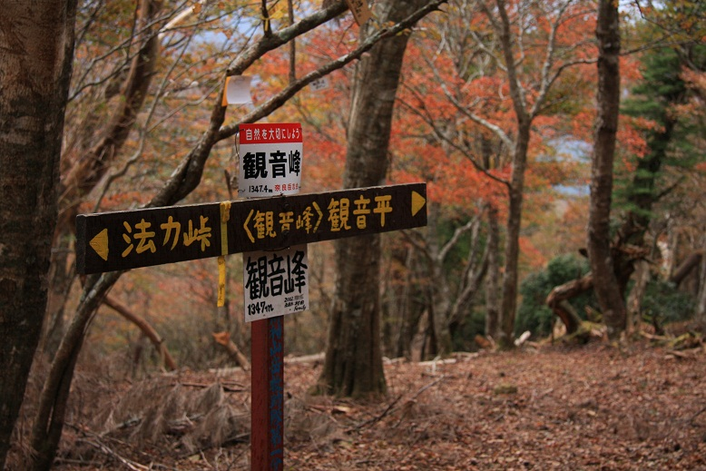 天川村観音峰、2