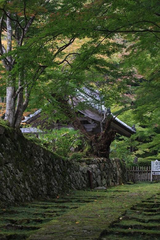 百済寺、1