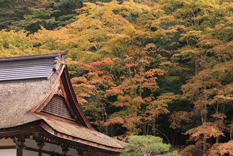 百済寺、3