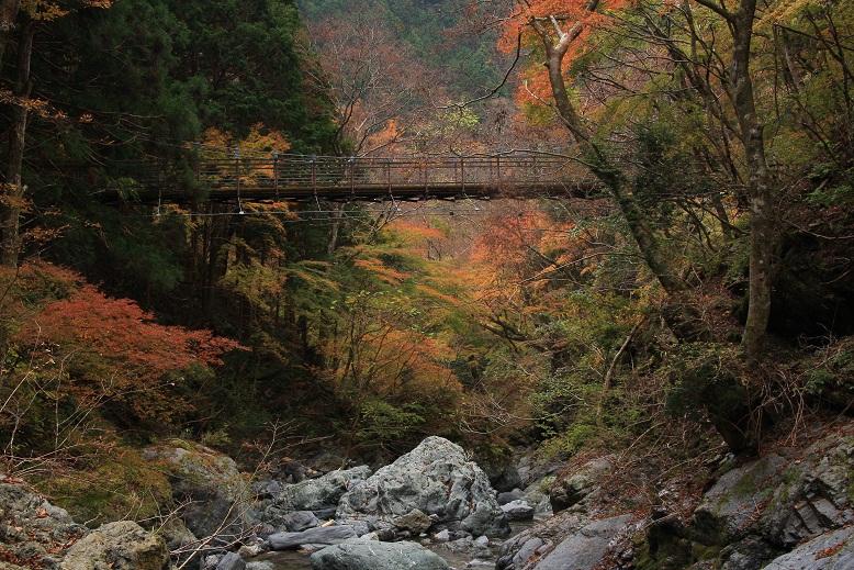 大又川 魚止滝、4