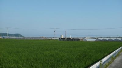 香宗川東側から香南かがみインター付近を見る