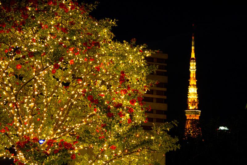 六本木ヒルズから望む東京タワー