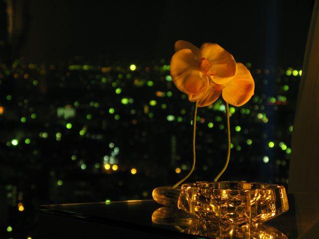 25階の花