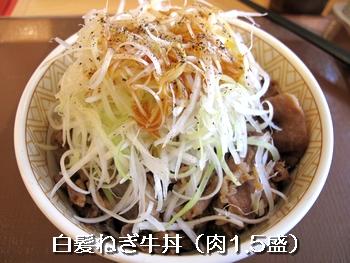 白髪ねぎ牛丼 肉1.5盛