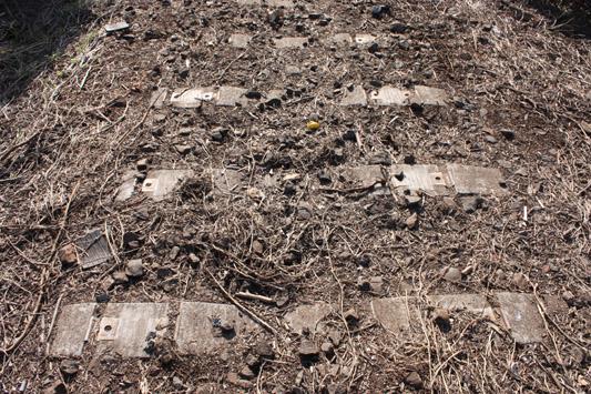 10-3-27三池浜線跡築堤整備 (26) のコピー